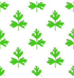 coriander herb chinese parsley seamless pattern vector image