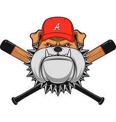 Ferocious Bulldog head vector image
