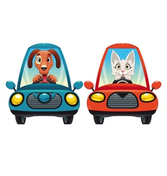 Animals in the car Dog and Cat vector