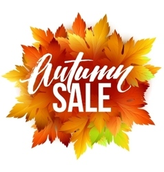 Autumn sale lettering design Fall leaf Label vector