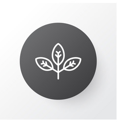 branch icon symbol premium quality isolated vector image