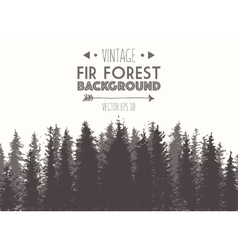 Fir forest background drawn vector