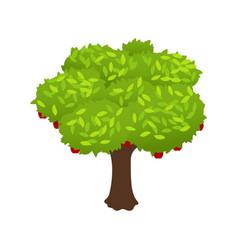 Harvest isometric icon vector