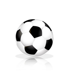 soccer ball with reflection on the floor white vector image
