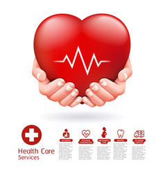 two hands and red heart conceptual design vector image