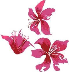 Flower bouquet set vector image