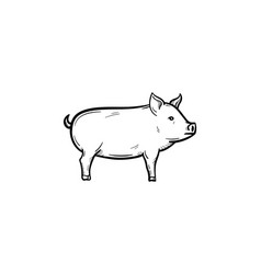 pig hand drawn sketch icon vector image