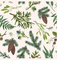 christmas seamless botanical pattern vector image