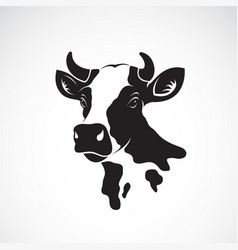 cow head design on white background farm animal vector image