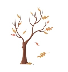 Isolated Oak Tree with Falling Leaves vector image
