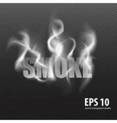 set transparent smoke on a plaid background vector image