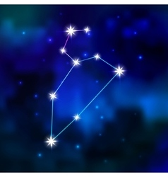 Zodiac constellation in the sky vector image