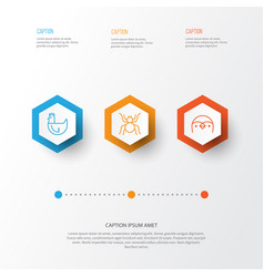 Zoology icons set collection spider diver vector