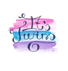 its twins text vector image vector image