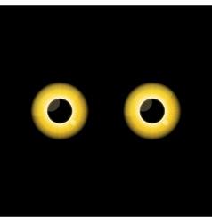 Yellow Cat eyes in dark night vector image vector image