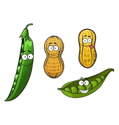 Cartoon opened green pea pods and peanuts vector