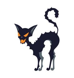evil cat vector image