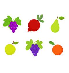Fruits set tropical fruits vector