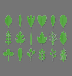 Set of green paper flower and tree leaves isolated vector