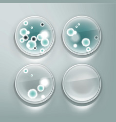 petri dish with molds vector image vector image