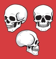 Skull Set in Hand Drawing Style vector image vector image
