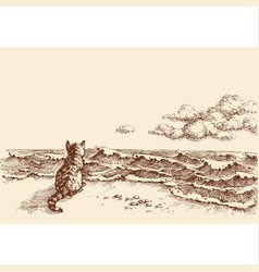 a cat on the beach watching the sea hand drawing vector image