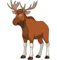 Adult funny elk vector image