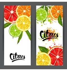 Banners with citrus fruits slices Mix of lemon vector image