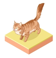 Isometric standing cat icon vector image