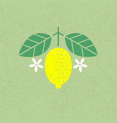 Lemon with leaves and flowers vector