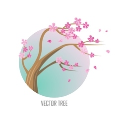 Tree Sakura Isolated on White vector