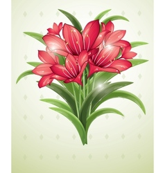 bunch of red lilies vector image vector image