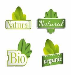 Eco Bio Natural Organic Icon Set vector image vector image