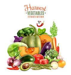 harvest of vegetables vector image vector image