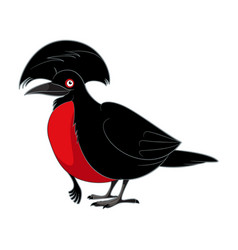 cartoon smiling umbrellabird vector image
