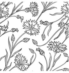 cornflower seamless pattern vector image