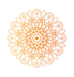 Decorative floral golden mandala ethnicity vector