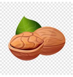 eco walnut icon cartoon style vector image