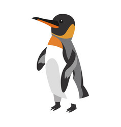 penguin cartoon icon vector image