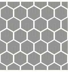 seamless pattern of lined grey hexagons vector image