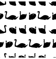 swans black shadows silhouette in lines pattern vector image