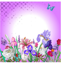 Tender floral empty template with butterfly vector