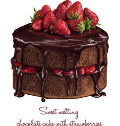 chocolate cake with strawberries vector image vector image