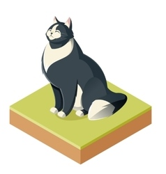 Isometric furry cat vector image vector image