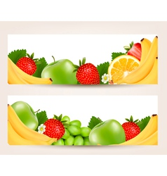two banners with colorful fresh fruit vector image