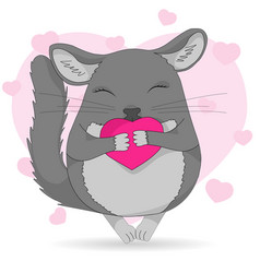 chinchilla pet colored vector image