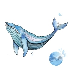 Watercolor whale vector