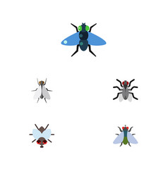 flat icon buzz set of buzz gnat hum and other vector image