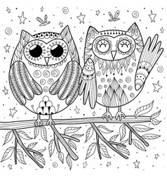 couple funny owls sitting on branch vector image