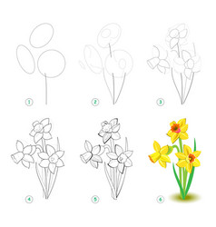 How to draw step step beautiful flower vector